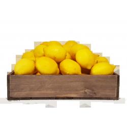 Lemons 80's - 120's  (15 kg)