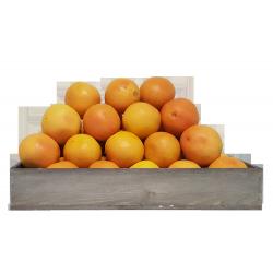 Ruby Grapefruit 45's - 55's (15 kg)