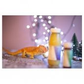 """Introducing........ TeaTree our """"Super Citrus"""" Bearded Dragon. Back in June we got this little fella, he is beyond cute and truly interesting. He will be getting a special mini stocking from Santa this year. What are you giving your pets for Christmas ? 📸@enhancelifestyles  #juicedublin #juiceireland #juicepower #dublinjuicebar #dublinjuice #dublinjuicestore #dublinjuices #dublinjuicers #irishdeliveryservices #irishjuiceber #instagood #dublinfitfam #vegan #vegandublin #wedeliver #healthydublin #healthyirelandatyourlibrary #dublinhealthfood #irishhealthfood #dublinfoodie #dublineats #irishbusiness #juicedelivery #coldpressedjuices #coldpressedjuiceireland #coldpressedjuicesireland #championgreen #shopirish #shopirishmade #shopsmallireland"""